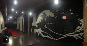 Ronin Art House Mural 25x30 ft